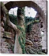 Castle Ruin Noerten-hardenberg Canvas Print