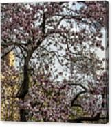 Central Park Spring Canvas Print
