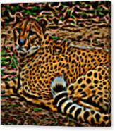 Cheeta Canvas Print