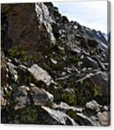 Colorful Lichens Growing On Rocks Along Monument Ridge, In The Eastern Sierra Nevadas Canvas Print