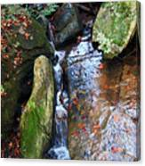 4 Faces In The Water Canvas Print