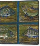 4 Fishes Canvas Print