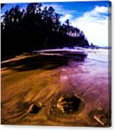 Fisheye Camera Canvas Print