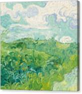 Green Wheat Fields, Auvers Canvas Print