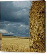 Hay Bales In Harvested Corn Field Canvas Print