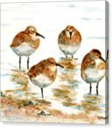 4 Little Pipers Canvas Print