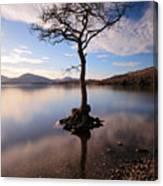Loch Lomond Tree Canvas Print