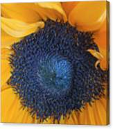 Macro Shot Of Flower Canvas Print