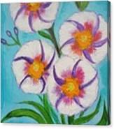 4 Morning Glories Flowers  Canvas Print