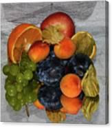 Multicolor Fruits Canvas Print