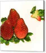 4... No... 3 Strawberries Canvas Print