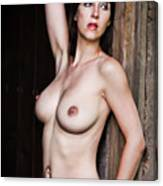 Nude Art Photography By Mary Bassett Canvas Print