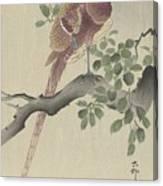 Ohara Koson Canvas Print