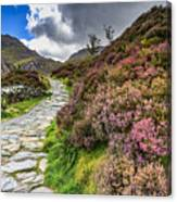 Snowdonia National Park - Canvas Print