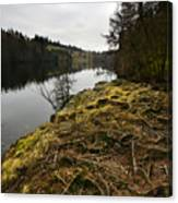 Tarn Hows Canvas Print