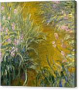 The Path Through The Irises Canvas Print