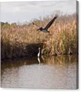 Turkey Creek In Palm Bay Florida Canvas Print