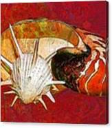 Underwater. Sea Shells. Canvas Print