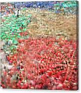 Xxvi Concurs De Castells Canvas Print