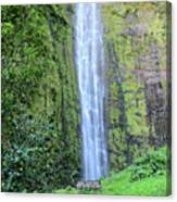 400 Foot Waimoku Falls Maui Canvas Print