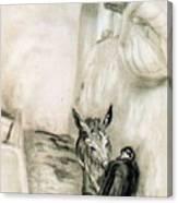 41659 Carlos Saenz De Tejada Canvas Print