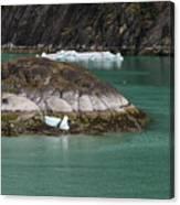 Alaska_00047 Canvas Print