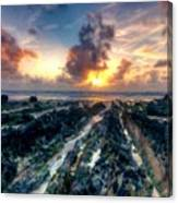 Landscape Definition Canvas Print