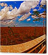 4x1 Everglades Panorama Number Two Canvas Print
