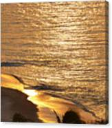 Golden Scenery Canvas Print