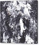 5-211-2 Canvas Print