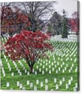 Arlington Cemetery Washington Dc Usa Canvas Print