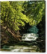 Cascadilla Gorge Falls Canvas Print
