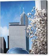 Chicago Bean Millenium Park Canvas Print