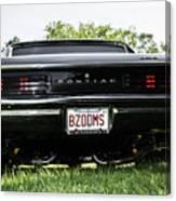 Classic Cars  Canvas Print