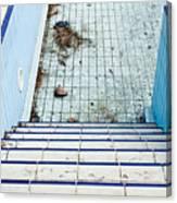 Derelict Swimming Pool Canvas Print