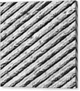 Diffraction Grating Tem Canvas Print