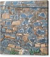 Goree Texture   Canvas Print
