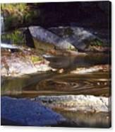 Waterfall Swirl Canvas Print