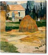 Landscape Near Arles Canvas Print