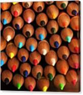 Multicolored Pencils  Canvas Print