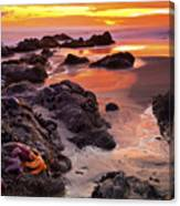 5 Star Sunset Canvas Print