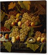 Still Life With Fruit Canvas Print