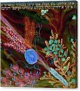 Sukkot- Prayer In The Sukkah Canvas Print
