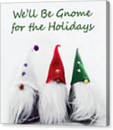 Three Holiday Gnomes 2a Canvas Print