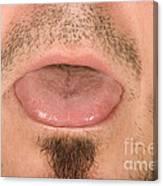Tongue Canvas Print