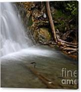 Waterfall, Quebec Canvas Print