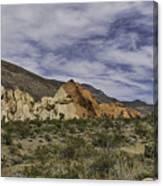 50-50 Canvas Print
