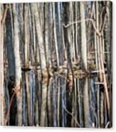 50 Shades Of Trees Canvas Print