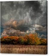 4108 Canvas Print