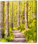 Types Of Landscape Nature Canvas Print